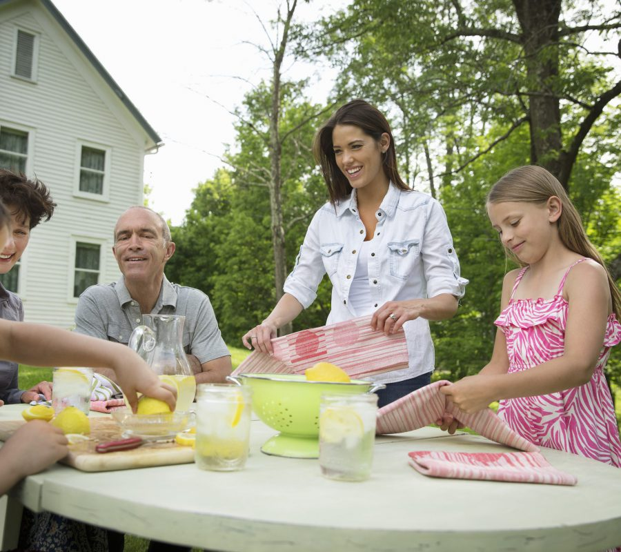 A summer family gathering at a farm. A family group, parents and children. Making fresh lemonade.